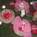 table picnic 059