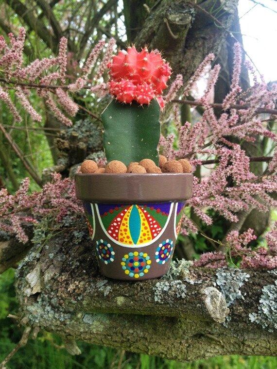 accessoires-de-maison-petit-pot-de-fleurs-pour-cactus-p-19552843-carrousel-alm-2-jpg-877f7_570x0