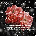 Belle et heureuse nouvelle année 2016