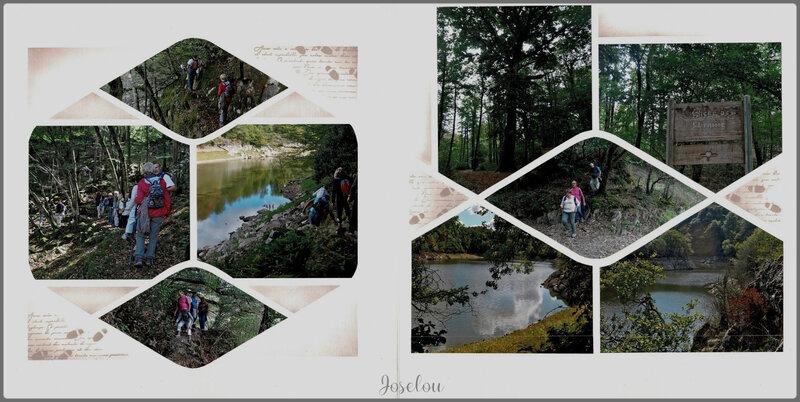 Forêt de Mervent (8)