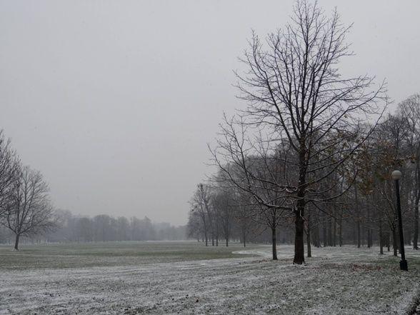 neige_002