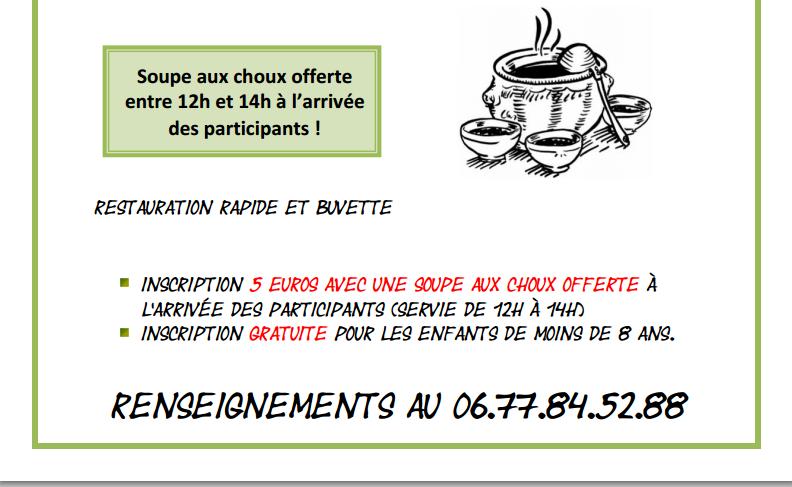 RANDONNEE PEDESTRE A LA FERME DE LA CUNIERE - LA CHAPELLE DE SURIEU (ISERE) - Suite 1
