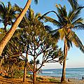 Goûter à Grande Anse