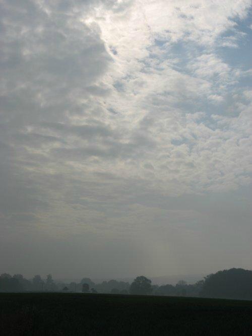 ciel146