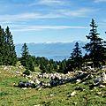 Face au Léman, les Alpes
