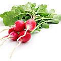 Soupe aux fanes de radis et de navets
