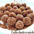 Truffes au chocolat et speculoos