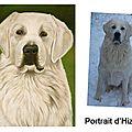 Portrait d'hizzys