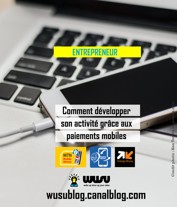 developper-activite-avec-paiement-mobile-cameroun-wusu-winnie-ndjock-2018