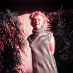 1954-PalmSprings-HarryCrocker_home-by_ted_baron-striped-020-2