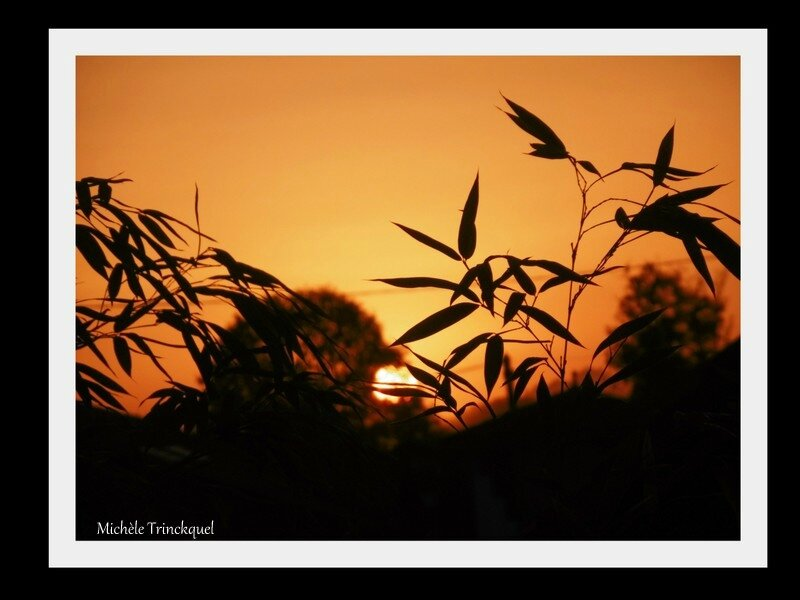 1-Lever de soleil 151017