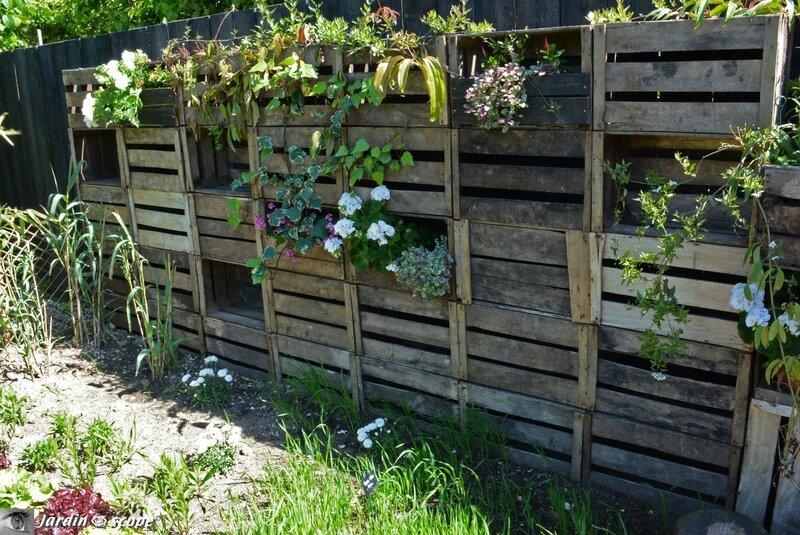 1621-Le-jardin-des-poules