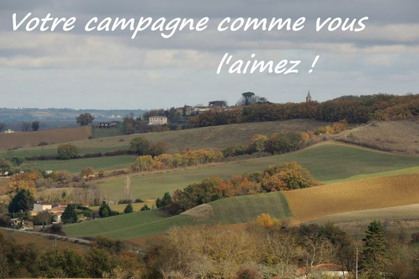 photo concours