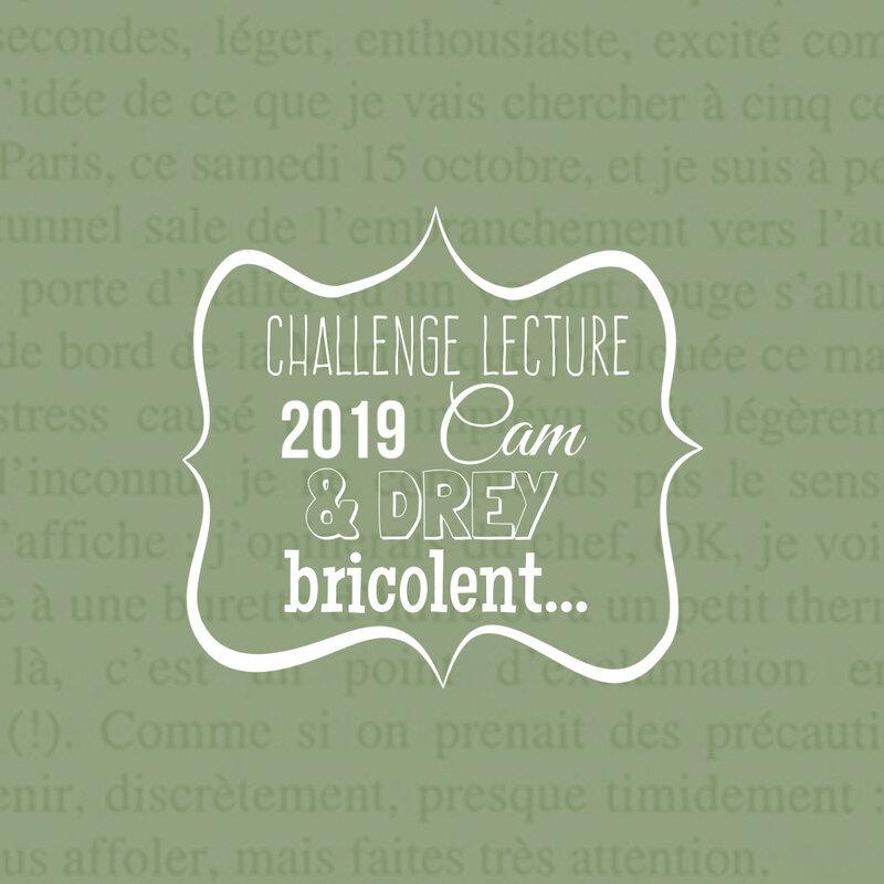 Challenge lecture 2019 Cam&Drey bricolent