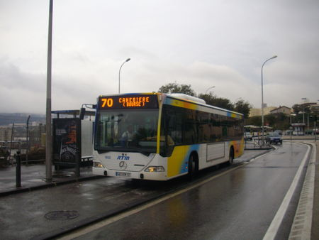 IMGP2423