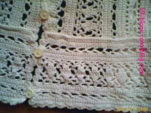 Blouse au crochet3