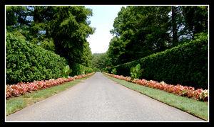 2008_07_20___WE_16___Longwood_Gardens_002
