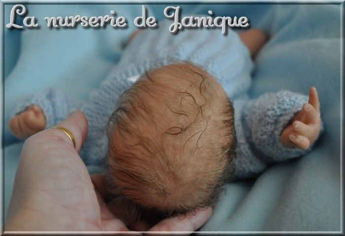 nurserie_janique_700_dsc_0536