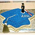 Gateau de graduation Vanessa 20111