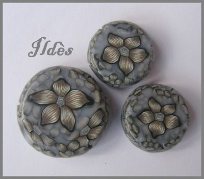 Canes fleurs de Medusa