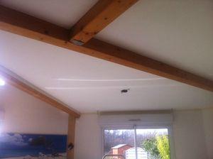 plafond (2)
