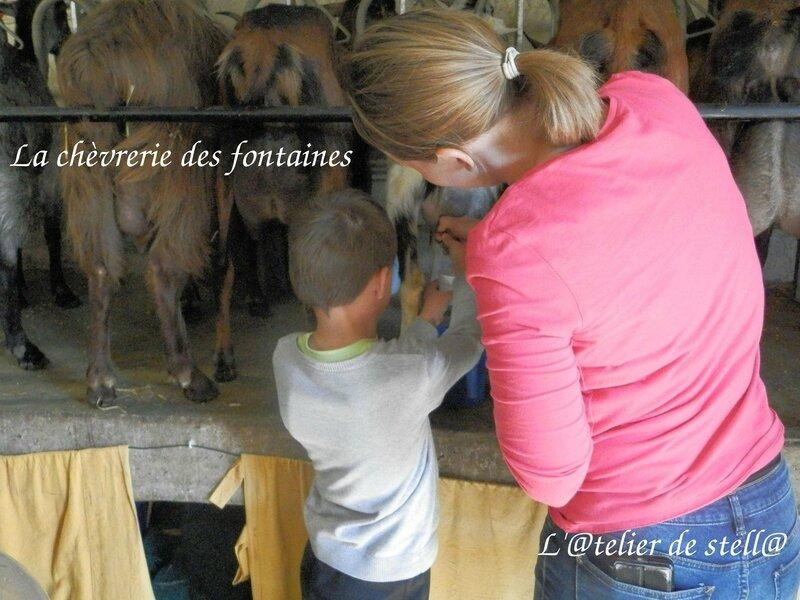 la chèvrerie des fontaines traite