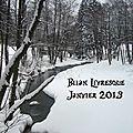 Bilan de janvier 2013
