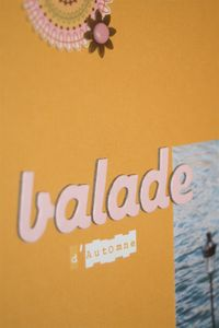 08_11_03_balade_d_automne_detail_2