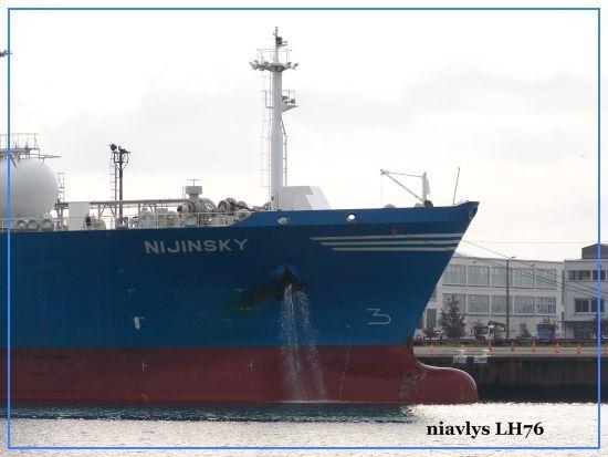 Nijinsky 5