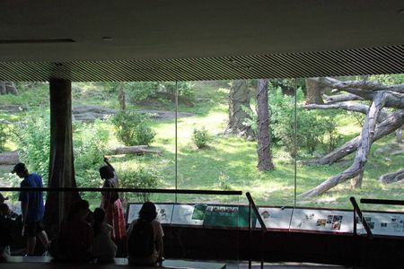 NYC_MMI___Bronx_Zoo_49