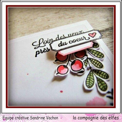 Sandrine VACHON fév dt LCDE (5)