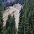 Road -Mount Rainier