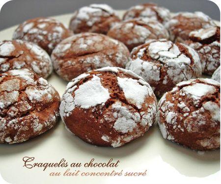 craquelés au chocolat (scrap4)