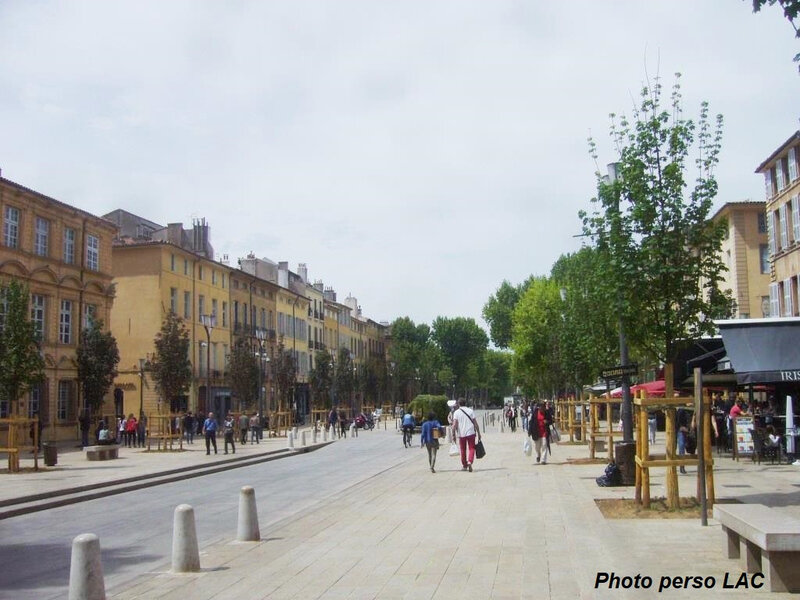 platanes cours 4