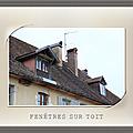 fenetres de toit__