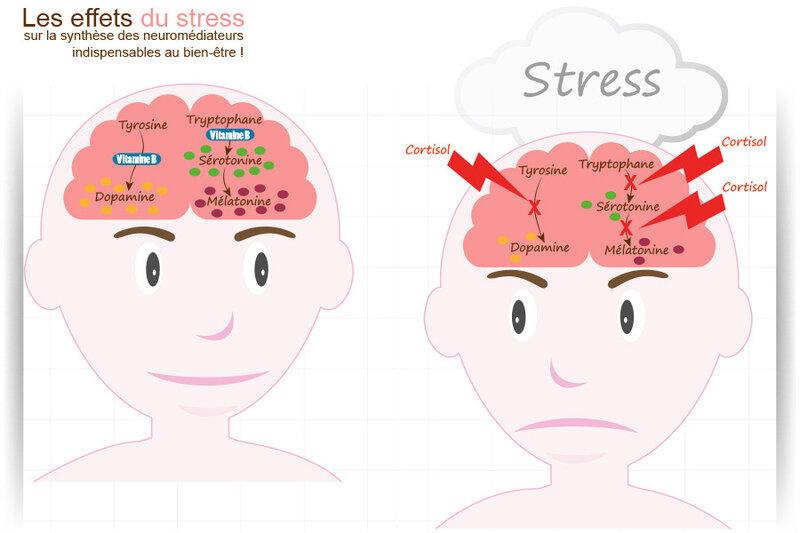 effets-stressHQ