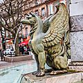Griffon de la fontaine Dupuy