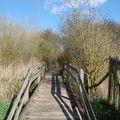 Réserve naturelle des étangs du Romelaëre ( St Omer )©