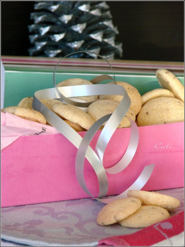 Biscuits d'Anis 004
