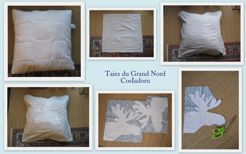 Taies du GN1