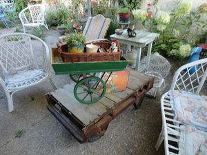 15 mon jardin ma cariole