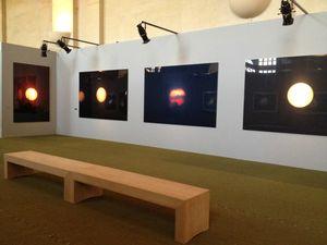 20 Exposition AHAE, orangerie, Versailles, Paris, Le soleil