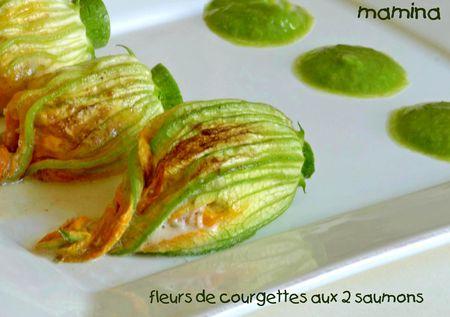 FLEURS_DE_COURGETTE2