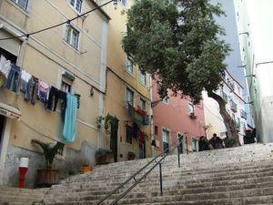 j2_escaliers