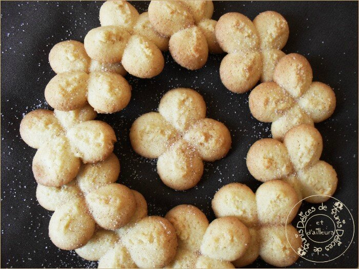 biscuits presse cannelle 2