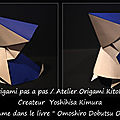 Origami animaux drôles -pélican-