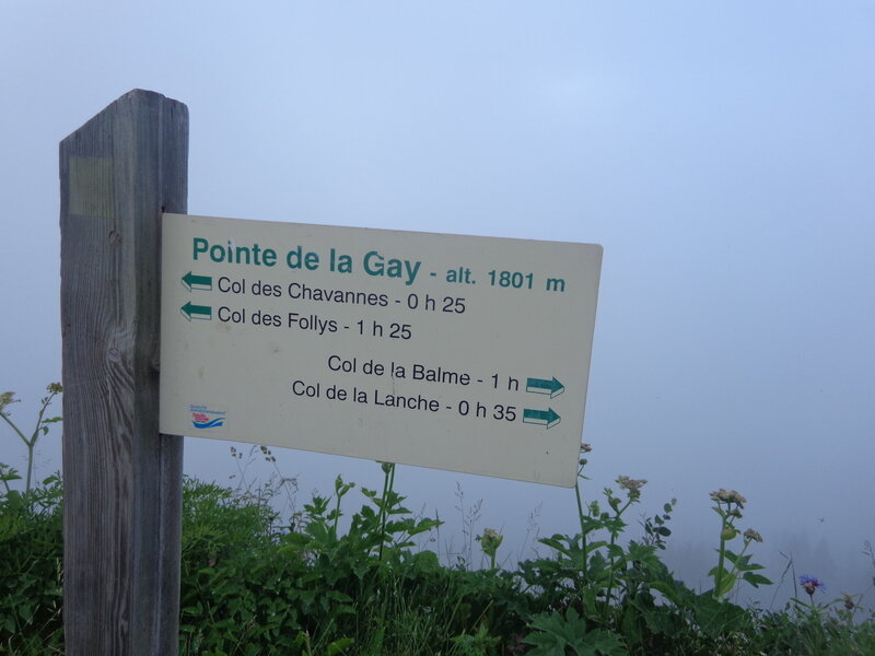 Pointe de la Gay... Brumeuse