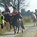 Jeux équestres manchots 2013 (85)