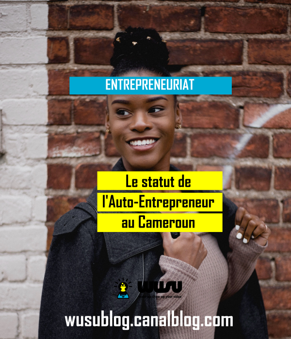 statut-autoentrepreneur-etablissement-cameroun-wusu-blog-winnie-ndjock-2018
