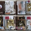02 Magali box mars 2013